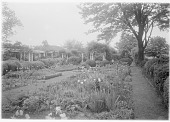 view [Marengo]: the garden in spring. digital asset: [Marengo] [glass negative]: the garden in spring.