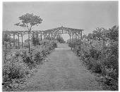 view [Holly Beach Farm]: garden beds and a rustic work pergola and gazebo, with a glimpse of the Chesapeake Bay beyond. digital asset: [Holly Beach Farm] [glass negative]: garden beds and a rustic work pergola and gazebo, with a glimpse of the Chesapeake Bay beyond.