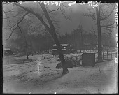 view [White Garden]: looking from porch to Sperry's. digital asset: [White Garden] [glass negative]: looking from porch to Sperry's.