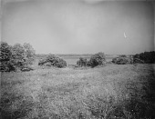 view [Giddings Property]: looking from the West Annapolis property toward the Severn River and the Baltimore & Annapolis Short Line Railroad bridge. digital asset: [Giddings Property] [glass negative]: looking from the West Annapolis property toward the Severn River and the Baltimore & Annapolis Short Line Railroad bridge.