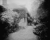 view [Bordley-Randall House]: one of the house's wings, with a brick walkway and climbing plants, facing what is now Randall Court. digital asset: [Bordley-Randall House] [glass negative]: one of the house's wings, with a brick walkway and climbing plants, facing what is now Randall Court.