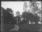 view [Tanglewood]: looking up through the grounds toward the house. digital asset: [Tanglewood] [glass negative]: looking up through the grounds toward the house.