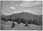 view [Miscellaneous Sites in New Hampshire, Series 1]: an unidentified location in the White Mountains. digital asset: [Miscellaneous Sites in New Hampshire, Series 1] [glass negative]: an unidentified location in the White Mountains.