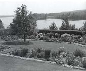 view [Bayside]: view from upper level of garden. digital asset: [Bayside] [photoprint]: view from upper level of garden.