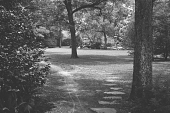 view [Middlegate Japanese Gardens]: Path leading from Sunken garden to second (St. Louis) street garden entrance. digital asset: [Middlegate Japanese Gardens]: Path leading from Sunken garden to second (St. Louis) street garden entrance.: 1962.