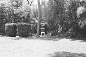 view [Middlegate Japanese Gardens]: Stone pagoda (12 feet high) and stone statue. digital asset: [Middlegate Japanese Gardens]: Stone pagoda (12 feet high) and stone statue.: 1962.