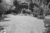 view [Middlegate Japanese Gardens]: Fu dogs to left, goddess of Charm (center), Northeast tea house in background. digital asset: [Middlegate Japanese Gardens]: Fu dogs to left, goddess of Charm (center), Northeast tea house in background.: 1962.