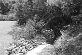 view [Middlegate Japanese Gardens]: Wishing bridge over empty stream. digital asset: [Middlegate Japanese Gardens]: Wishing bridge over empty stream.: 1962.
