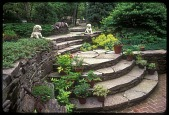 view [Berg Gardens]: curved stone stairs down to the castle gounds. digital asset: [Berg Gardens]: curved stone stairs down to the castle gounds.: 2000 Jun.