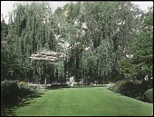view Wallbridge Garden digital asset: Wallbridge Garden [lantern slide]