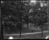 view [Princeton University]: view from Wilson's window. digital asset: [Princeton University] [glass negative]: view from Wilson's window.