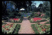 view [Straus Garden]: formal garden, looking toward house and patio. digital asset: [Straus Garden]: formal garden, looking toward house and patio.: 1978 Sep.