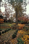 view [Thomas Garden, The]: formal garden and steps to back lawn and tennis court in late fall. digital asset: [Thomas Garden, The]: formal garden and steps to back lawn and tennis court in late fall.: 1999 Dec.