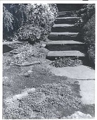 view [Laurelwood Arboretum]: stone steps leading down to terrace and water. digital asset: [Laurelwood Arboretum] [photoprint]: stone steps leading down to terrace and water.