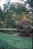 view [Prin Hall]: view from bench area to formal parterre garden. digital asset: [Prin Hall]: view from bench area to formal parterre garden.: 2002 Oct.