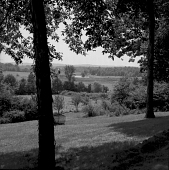 view [Wing Haven]: view from house to surrounding fields and woodlands; birdfeeder in foreground. digital asset: [Wing Haven] [safety film negative]: view from house to surrounding fields and woodlands; birdfeeder in foreground.