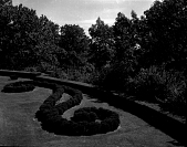 view [Peters Garden]: boxwood in knot-like design, with clipped hedge behind. digital asset: [Peters Garden] [safety film negative]: boxwood in knot-like design, with clipped hedge behind.