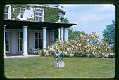 view [Peters Garden]: porch and portico with white wisteria. digital asset: [Peters Garden] [slide (photograph)]: porch and portico with white wisteria.