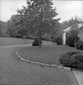 view [Frost Garden]: looking from garage along driveway and front of house. digital asset: [Frost Garden] [contact print and safety film negative]: looking from garage along driveway and front of house.