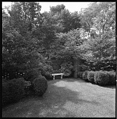view [Keith Garden]: garden bench against latticed brick wall, flanked by boxwood. digital asset: [Keith Garden] [contact print and safety film negative]: garden bench against latticed brick wall, flanked by boxwood.