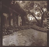 view [Unidentified Garden in New Jersey, No. 2]: wisteria-covered pergola and garden view. digital asset: [Unidentified Garden in New Jersey, No. 2] [photonegative]: wisteria-covered pergola and garden view.