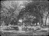 view [Miscellaneous Sites near Summit, New Jersey]: a shallow stream strewn with rocks; trees along the banks. digital asset: [Miscellaneous Sites near Summit, New Jersey]: a shallow stream strewn with rocks; trees along the banks.: [between 1914 and 1949]