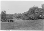 view [Central Park]: an unidentified location in the park, with the dome of Temple Beth-El barely visible above the treetops. digital asset: [Central Park] [glass negative]: an unidentified location in the park, with the dome of Temple Beth-El barely visible above the treetops.