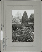 view Ormston House digital asset: Ormston House [photoprint]
