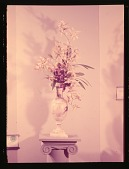 view New York Flower Show digital asset: New York Flower Show: 03/21/1950
