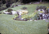 view [Miss Dorothy Willard Estate]: rock garden with stream on sloped lawn. digital asset: [Miss Dorothy Willard Estate] [slide]: rock garden with stream on sloped lawn.
