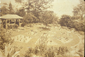 view [Rose Cove]: bird's eye view of the rose garden. digital asset: [Rose Cove]: bird's eye view of the rose garden.: [1925?]