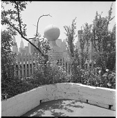 view [Gaines Garden]: corner of garden, with Chrysler and Empire State buildings in distance. digital asset: [Gaines Garden] [contact print and safety film negative]: corner of garden, with Chrysler and Empire State buildings in distance.