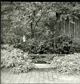 view [Ireys Garden]: small pool and garden light. digital asset: [Ireys Garden] [photographic print]: small pool and garden light.