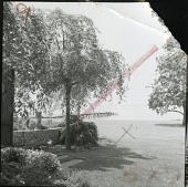view [Mendelson Garden]: looking from house across lawn to Long Island Sound. digital asset: [Mendelson Garden] [photographic print]: looking from house across lawn to Long Island Sound.
