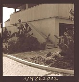 view [Unidentified Garden in Quogue, New York]: entryway plantings off brick driveway. digital asset: [Unidentified Garden in Quogue, New York] [photonegative]: entryway plantings off brick driveway.