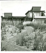 view [Unidentified Garden in Quogue, New York]: looking up to house through dune grass plantings. digital asset: [Unidentified Garden in Quogue, New York] [photoprint]: looking up to house through dune grass plantings.