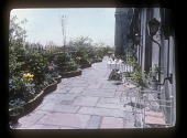 view [Rubinstein Garden]: undulating garden beds with brick edging. digital asset: [Rubinstein Garden] [slide (photograph) of a lantern slide]: undulating garden beds with brick edging.