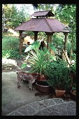 view [Moot Pointe]: dog with frog oven hut and pebble mosiac walkway. digital asset: [Moot Pointe]: dog with frog oven hut and pebble mosiac walkway.: 1997 Oct.
