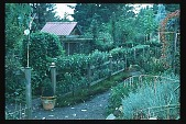 view [Moot Pointe]: southeast view of The Farm. digital asset: [Moot Pointe]: southeast view of The Farm.: 1997 Oct.