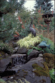 view [Birds and Bees]: waterfall from lower garden with rocks, bird feeder, Hakonechloa macra 'Aureola' grass and Phygelius capensis. digital asset: [Birds and Bees]: waterfall from lower garden with rocks, bird feeder, Hakonechloa macra 'Aureola' grass and Phygelius capensis.: 2002 Sep.
