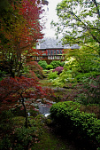 view [Josselyn Garden]: the Japanese garden features a collection of forty Japanese maple trees. digital asset: [Josselyn Garden]: the Japanese garden features a collection of forty Japanese maple trees.: 2010 Jun.