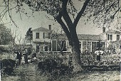 view [Boxly]: tenant house which would become Boxly, showing already mature boxwood. digital asset: [Boxly]: tenant house which would become Boxly, showing already mature boxwood.: 1860.