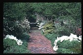 view [Boxly]: brick walk and garden borders. digital asset: [Boxly]: brick walk and garden borders.: 1972 May.