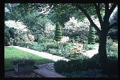 view [Boxly]: dogwood, flower beds, and topiary work. digital asset: [Boxly]: dogwood, flower beds, and topiary work.: 1972 May.