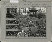 view [Breeze Hill]: Steps and Trilliums in front of gazebo. digital asset: [Breeze Hill] [photographic print]: Steps and Trilliums in front of gazebo.
