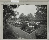 view [Breeze Hill]: Flower beds of peonies, climbing plants, arches in background. digital asset: [Breeze Hill] [photographic print]: Flower beds of peonies, climbing plants, arches in background.
