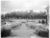 view [Chestnutwold Farm]: looking north through the garden, with a gardener visible on the left. digital asset: [Chestnutwold Farm] [glass negative]: looking north through the garden, with a gardener visible on the left.