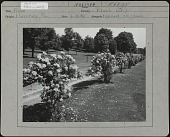 view Country Club of Hershey digital asset: Country Club of Hershey [photoprint]