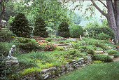 view [Glenderro Farm]: terraced rock garden with stairs leading to opening between two evergreen shrubs. digital asset: [Glenderro Farm]: terraced rock garden with stairs leading to opening between two evergreen shrubs.: 2003 Jun.