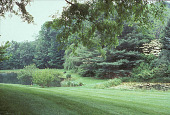 view [Glenderro Farm]: two ponds in sloping lawn bounded by wooded area. digital asset: [Glenderro Farm]: two ponds in sloping lawn bounded by wooded area.: 2003 Jun.